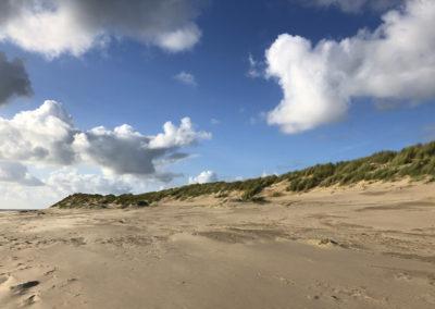 Sand Dunes, Aberdovey Beach