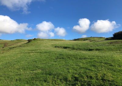 Out for a breath of fresh air walking the hills above Aberdovey